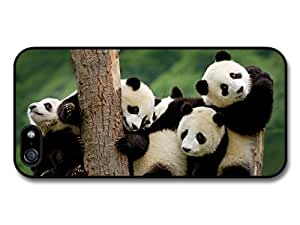 Adorable Cute Panda Bears Hugging On A Tree Case For Iphone 5/5S Cover