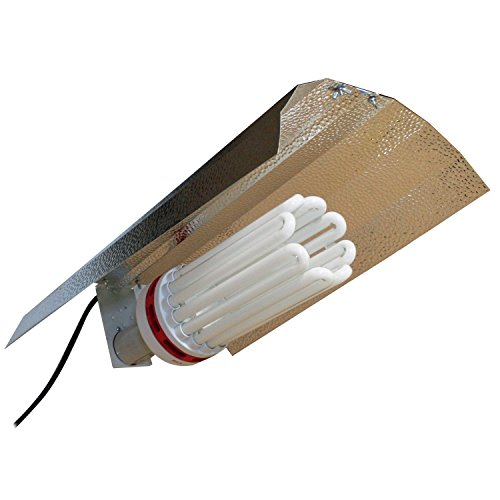 SPL Horticulture Compact Fluorescent Growing product image