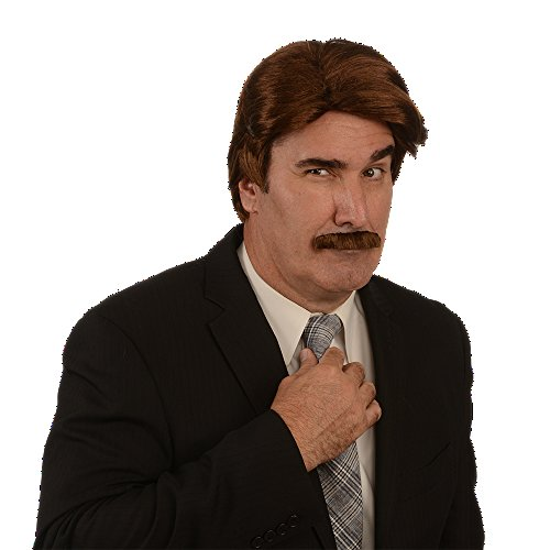 Costume Wig; 70s News Reporter Wig & Mustache, Brown (80s Guys Costume)