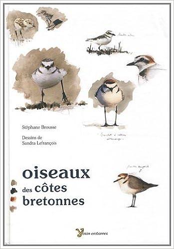 Oiseaux Des Cotes Bretonnes Amazon Fr Brousse Stephane Lefrancois Sandra Livres