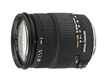 2014 Sigma 18-200mm F3.5-6.3 DC Macro OS HSM (C) | Shutter Journey ...
