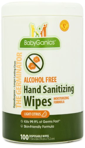 BabyGanics Alcohol Free Hand Sanitizer Wipes Canister, Light Citrus Scent, 100 Count (6 Pack)