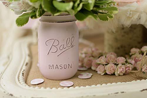 x2 Pink Mason Jars- Custom Painted Mason Jar - Mason Jars - Mason Jar Vase - Painted Mason Jar - Bulk Mason Jars - Mason Jar Decor - (Pink And Blue Mason Jars)