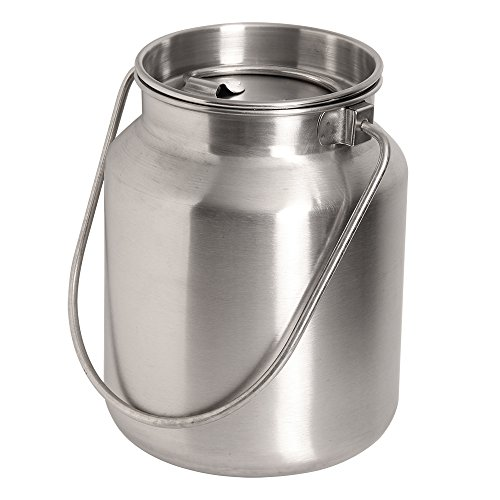 Lindy's Stainless Steel Gallon Jug, Silver