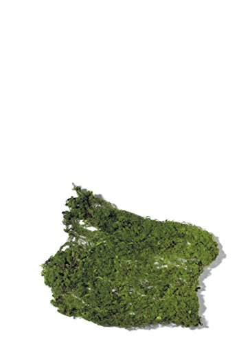 Sullivans Artificial 9'' x 12'' Thin Moss Pad for Fairy Gardens and Other Arts and Crafts by Sullivans