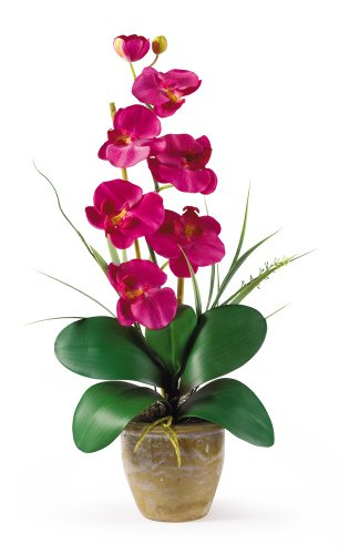 Nearly Natural 1016-BU Phalaenopsis Silk Orchid Flower Arrangement, -