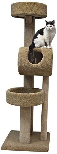 beatrise-pet-products-kitty-town-house