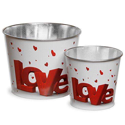National Tree Set of 2 Valentine Tin Pots with Red