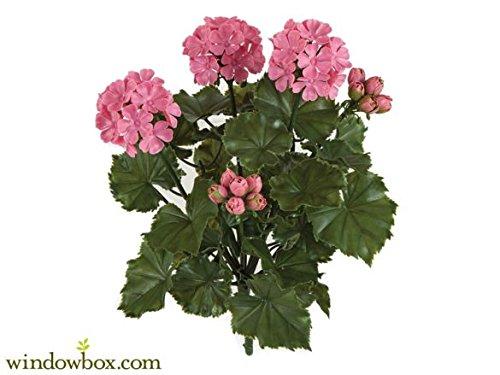 Windowbox 16IN. Artificial Outdoor Geranium Bush - Pink