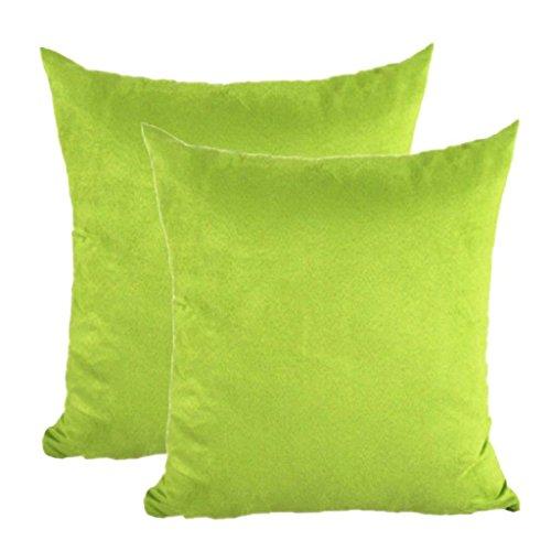 Apple Green Pillow - Juanshi Set of 2 Piece 19