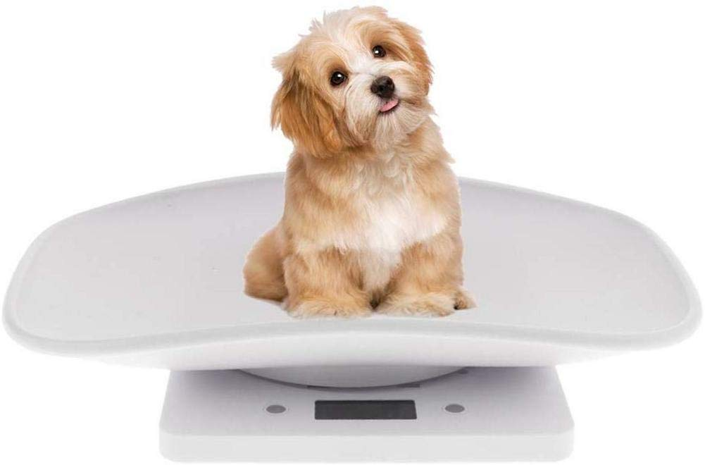 Hoicenja Multi-Function Digital Pet Scale to Measure Dog and Cat Weight Multi-Function Baby Scale, Infant Scale Digital Perfect for Toddler/Puppy/Cat/Dog/Adult by Hoicenja