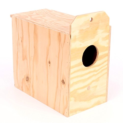 41mUl 5nZ0L - Ware Manufacturing Love Bird Wood Reverse Nest Box