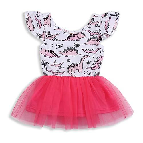 Infant Toddler Kids Baby Girls Dress Dinosaur Tulle Tutu Sleeveless Skirt Clothes Set (Pink, 2-3 Years)