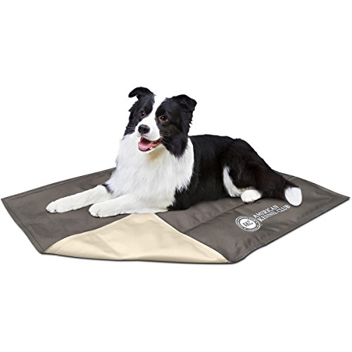 american kennel club solid reversible