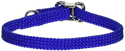 Coastal Pet 08501 BLU12 Nylon Dog Collar, 3/8 by 12-Inch