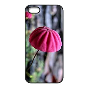 Colorful Mushroom Personalized Durable Hard Plastic Case Cover LUQ339643 For Iphone 5,5S