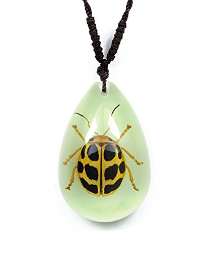 Glow In the Dark Small Necklace w/ Genuine Spotted Leaf Beetle ()