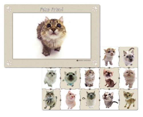 Feline Friend Kitten Reversible Placemats