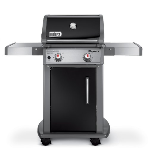 Weber 46110001 Spirit E210 Liquid Propane Gas Grill Black