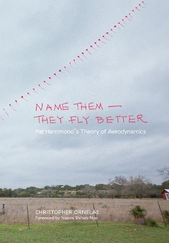 Download Name Them―They Fly Better: Pat Hammond's Theory of Aerodynamics PDF