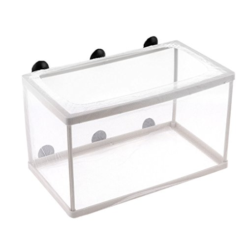 - Water & Wood Fish Tank Aquarium Plastic Frame White Net Fry Hatchery Breeder w 6 x Suction Cups