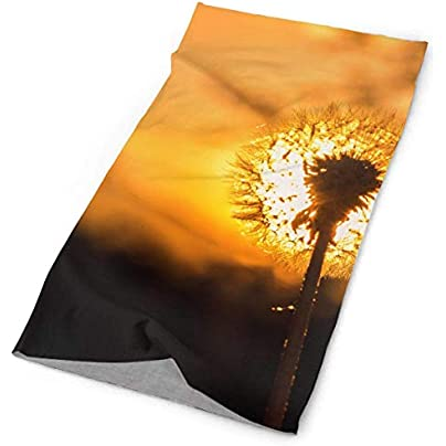 Headbands Sunset Dandelion Flower Headband Unisex Headwrap Magic Head Scarf Bandana Headwear Neckerchief Multifunction Balaclava Casual Headdress Wristband Estimated Price £8.00 -