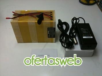 Batería litio 36v 20AH | batería patinete electrico: Amazon ...