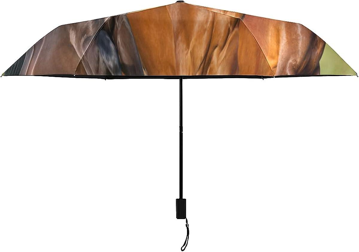 Paraguas de viaje para mujer Galopante Caballo de guerra antiguo Animal Hierba Paraguas de viaje para niños Portátil Ligero A prueba de viento Paraguas duradero A prueba de viento Sol Lluvi