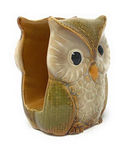 (Nature's Home Ceramic Owl Napkin Holder (Green))