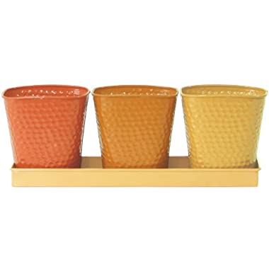 Robert Allen Home and Garden Selby Herb Garden Set, Butterscotch