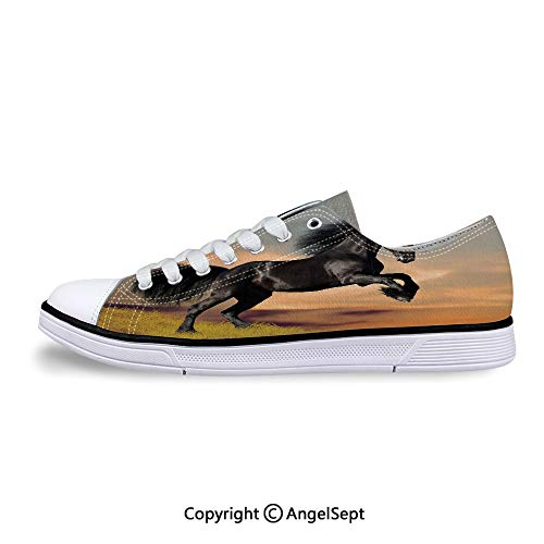 Sneakers for Ladies Friesian Horse Galloping Idyllic Sunset Low Top Canvas Shoe
