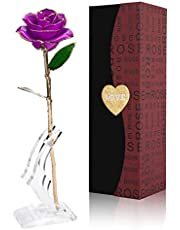 NICEAO 24k Gold Rose, Artificial Flowers Red Rose Flowers Artificial for Decoration, Long Stem with Transparent Stand, Golden Rose for Girlfriend Gift, Wedding Flowers, Mother's Day Birthday