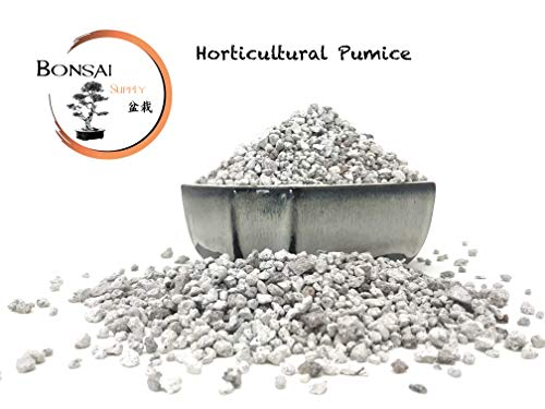 Pumice Bonsai Tree Soil - Cactus- Succulent -Orchid (Horticultural Pumice) 2.5Quart Bag - 1/4 inch Size Particle Great for Aeration, Drainage. Adds Over 70 Natural Minerals to Your Soil Mixture.