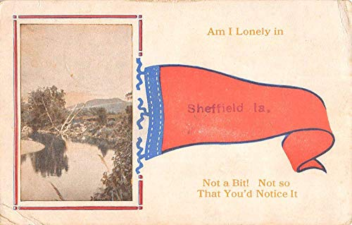 Sheffield Iowa Scenic Waterfront Pennant Flag Antique Postcard K107214