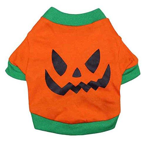 DroolingDog Dog Halloween Costumes XS Dog Shirt with Evil Pumpkin Head for Small Dogs, XS - Dog Pumpkin Costumes