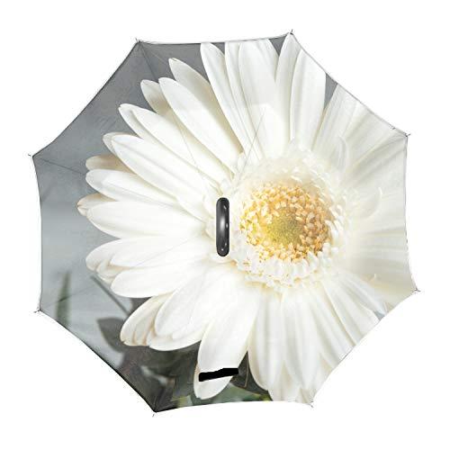 - Double Layer Inverted Umbrella – Blossom Plant White Flower Reverse Auto Open Umbrella - Windproof UV Protection Upside Down Umbrella For Car Rain Outdoor Use