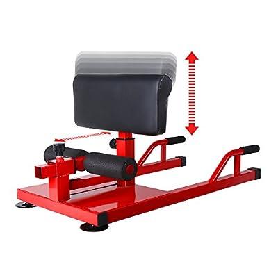 FEIERDUN Sissy Squat - Push up Ab Workout Home Gym Machine 3-in-1 Sit up Machine