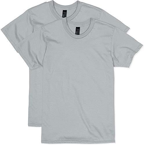 Hanes Men's Nano Premium Cotton T-Shirt (Pack of 2), Light Steel, Large