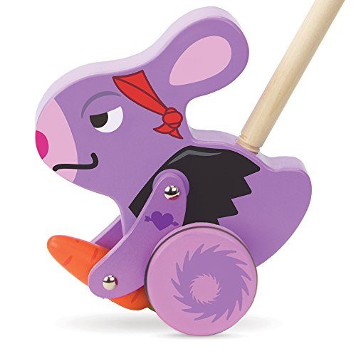 (Radical Racers Burnout Bunny Wooden Push-Along Walking Toy by Imagination Generation)