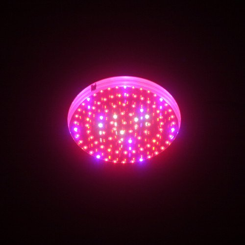 Grow Light Led Vs Hps in US - 7