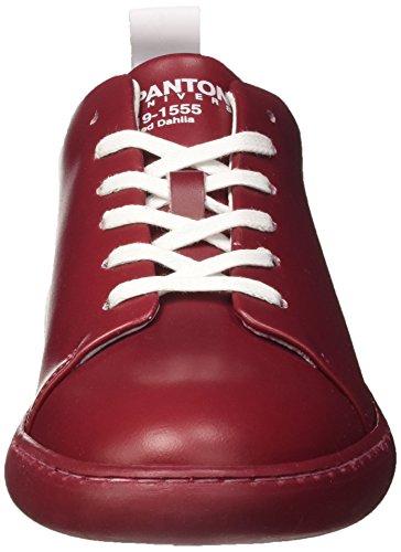 Adulto Rosso Basso a Collo Pantone NYC Red Unisex Sneaker Dhalia xp4xY6