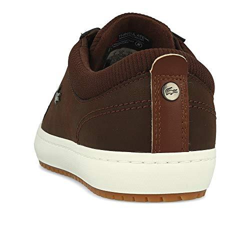 Brown Brown Straightset Insulate Brown Lacoste Cam 3181 wfR7zaxq