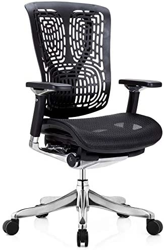 GM Seating Ergobilt High-Back Ergonomic Executive Task Mesh Swivel Office Desk Chair