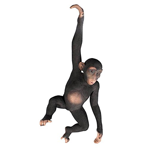 Design Toscano Jungle Monkey Hanging Animal Statue, 37 Inch, Fiberglass Polyresin, Full Color ()