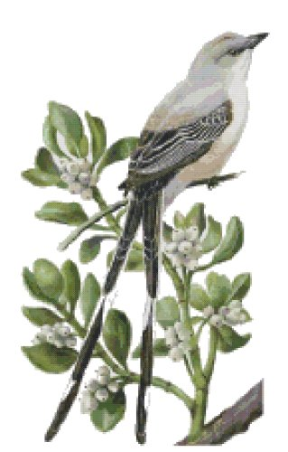 Oklahoma State Bird (Scissor-Tailed Flycatcher) and Flower (Mistletoe-until 2004) Counted Cross Stitch Pattern