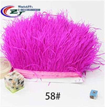 Pukido 1meter 8-10cm Fluffy Ostrich Feather Trim Dress/Skirt/Costume Feather Ribbon Fringe for DIY Craft Special Price - (Color: Fuschia) -