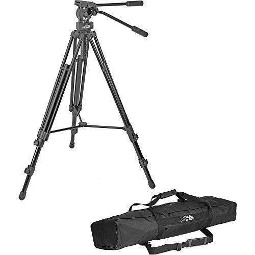 Davis & Sanford Provista 7518 Tripod with FM18 Head by Davis & Sanford