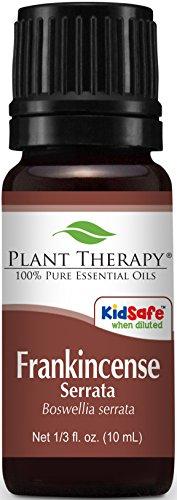 Serrata aceite esencial de incienso. 10 ml. 100% puro, sin diluir, terapéuticas grado.