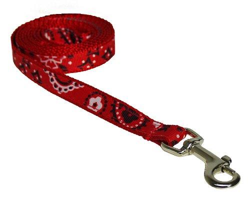 Sassy Dog Wear 4-Feet Red Bandana Dog Leash, X-Small