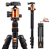 VICTIV Camera Tripod 81 inches Monopod, Aluminum Travel Tripod for DSLR, Lightweight Tripod Loads up to 19 lbs with 360 Degree Ball Head and Carry Bag for Travel and Work - AT26 Orange
